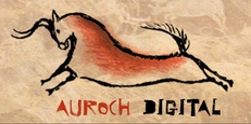 Auroch Digital logo